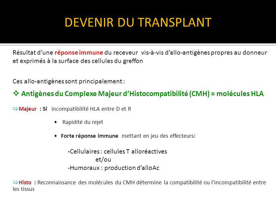 DEVENIR DU TRANSPLANT Antigènes mineurs dhistocompatibilité (AgmH) - Codés par des gènes porteurs dun polymorphisme allèlique et situés en dehors du CMH - Rejet moins rapide et moins violent quen cas dincompatibilité pour le CMH - Capables dinduire un rejet cellulaire Allogreffes rénales HLA identiques rejetées /nécessité dimmunosuppression Autres allo antigènes impliqués dans le rejet Cibles des Ac préformés ou induits par la greffe.