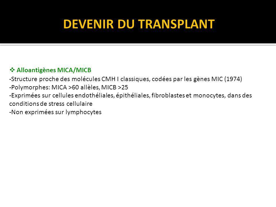 RECHERCHE DANTICORPS ANTI-HLA ET NON HLA CHEZ LE PATIENT TRANSPLANTÉ Le diagnostic actuel dAMR repose sur trois critères (classification de Banff révisée en 2001) 1.