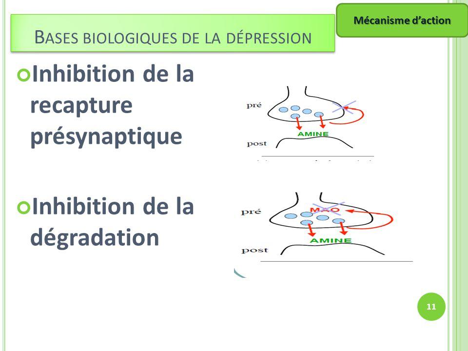 Inhibition de la recapture présynaptique Inhibition de la dégradation 11 B ASES BIOLOGIQUES DE LA DÉPRESSION Mécanisme daction