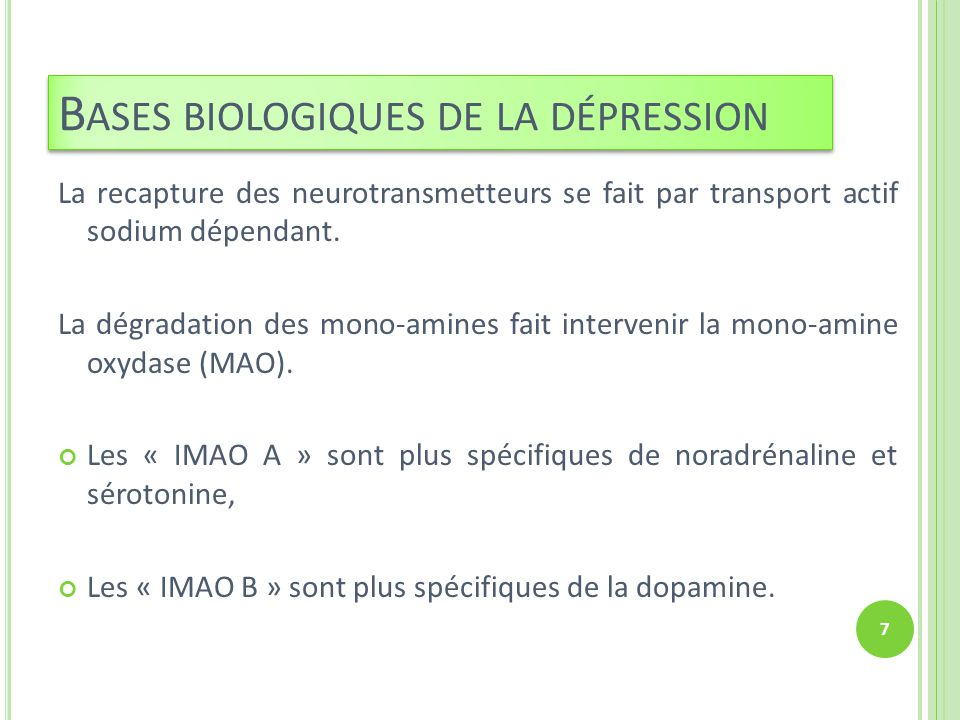 La recapture des neurotransmetteurs se fait par transport actif sodium dépendant. La dégradation des mono-amines fait intervenir la mono-amine oxydase