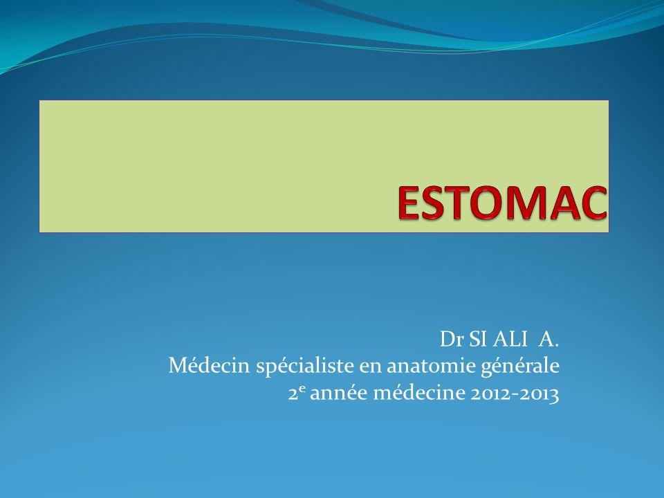 Dr SI ALI A. Médecin spécialiste en anatomie générale 2 e année médecine 2012-2013
