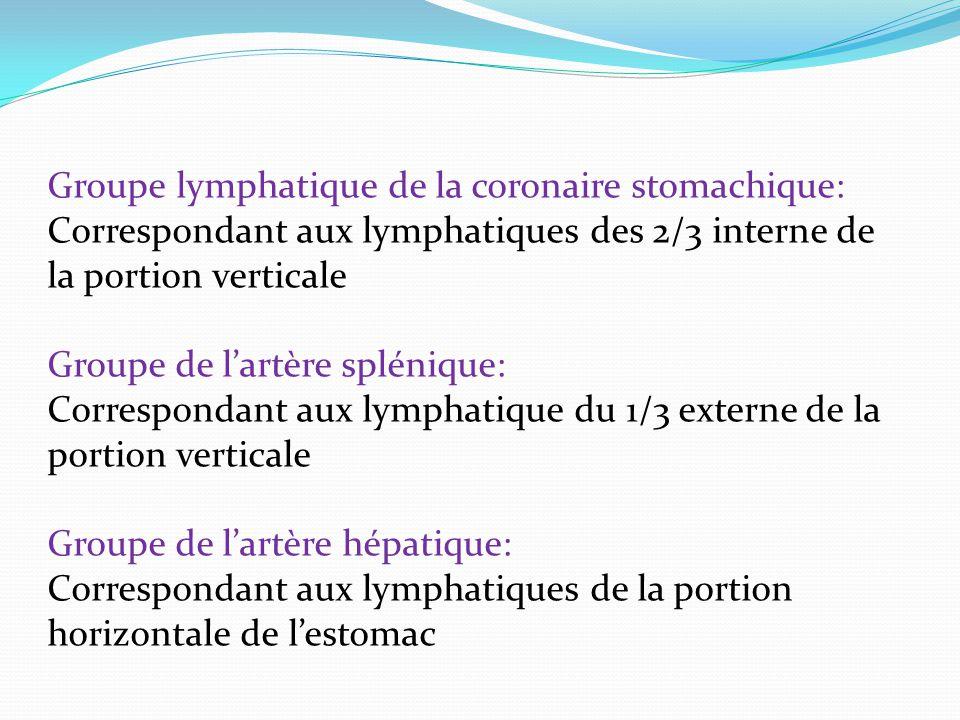 Groupe lymphatique de la coronaire stomachique: Correspondant aux lymphatiques des 2/3 interne de la portion verticale Groupe de lartère splénique: Correspondant aux lymphatique du 1/3 externe de la portion verticale Groupe de lartère hépatique: Correspondant aux lymphatiques de la portion horizontale de lestomac