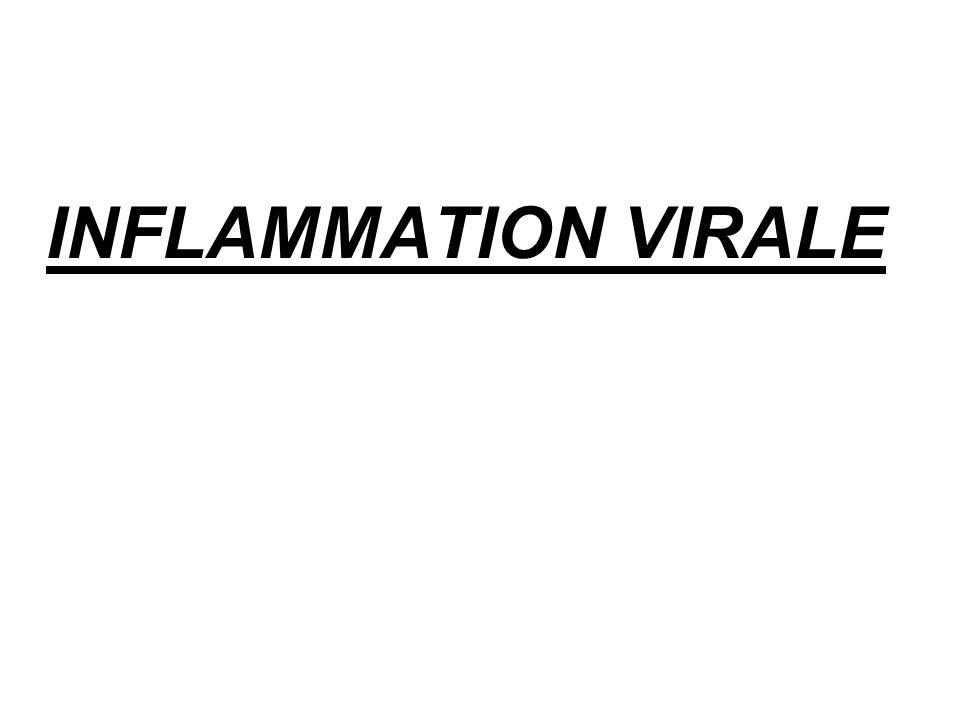 INFLAMMATION VIRALE