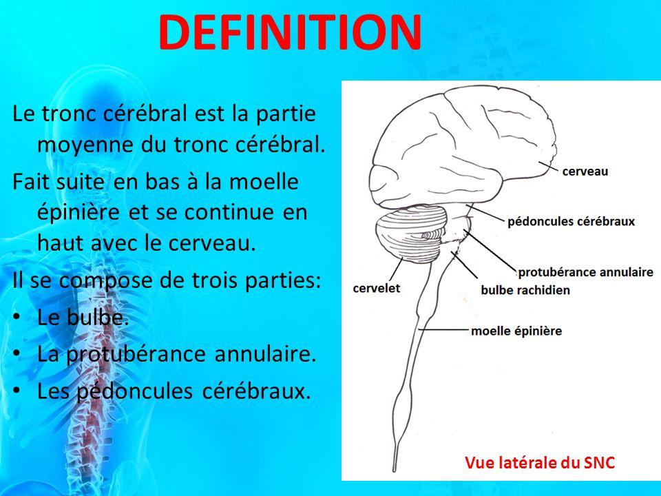 DEFINITION Vue latérale du SNC Le tronc cérébral est la partie moyenne du tronc cérébral.