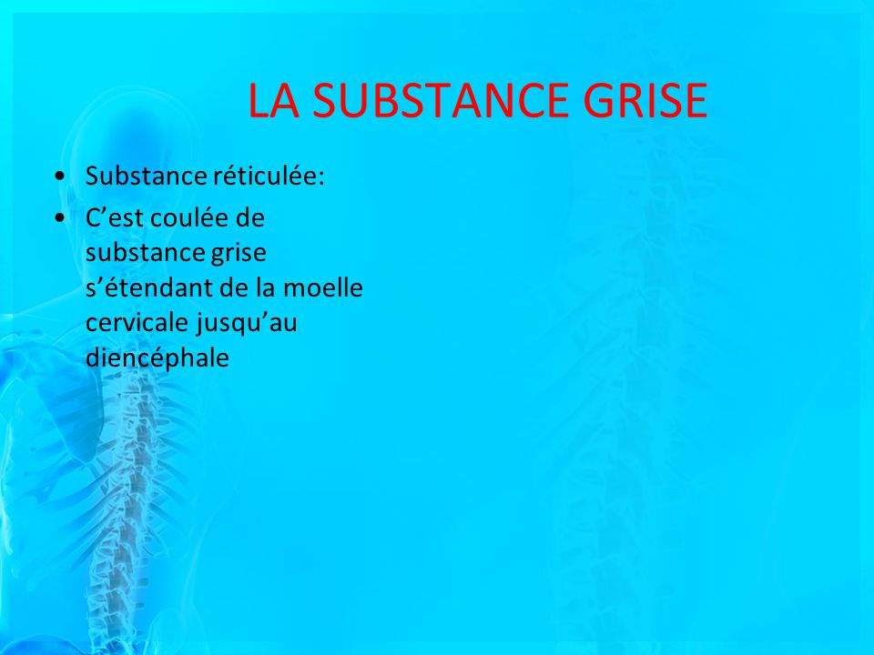 Substance réticulée: Cest coulée de substance grise sétendant de la moelle cervicale jusquau diencéphale LA SUBSTANCE GRISE