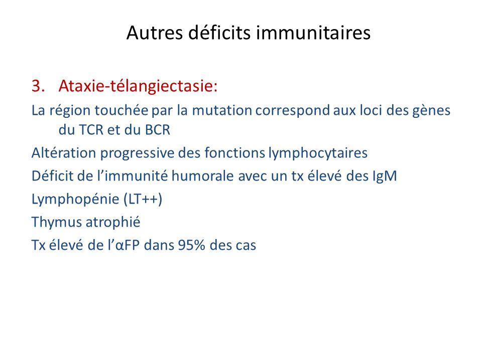 Autres déficits immunitaires 3.Ataxie-télangiectasie: La région touchée par la mutation correspond aux loci des gènes du TCR et du BCR Altération prog