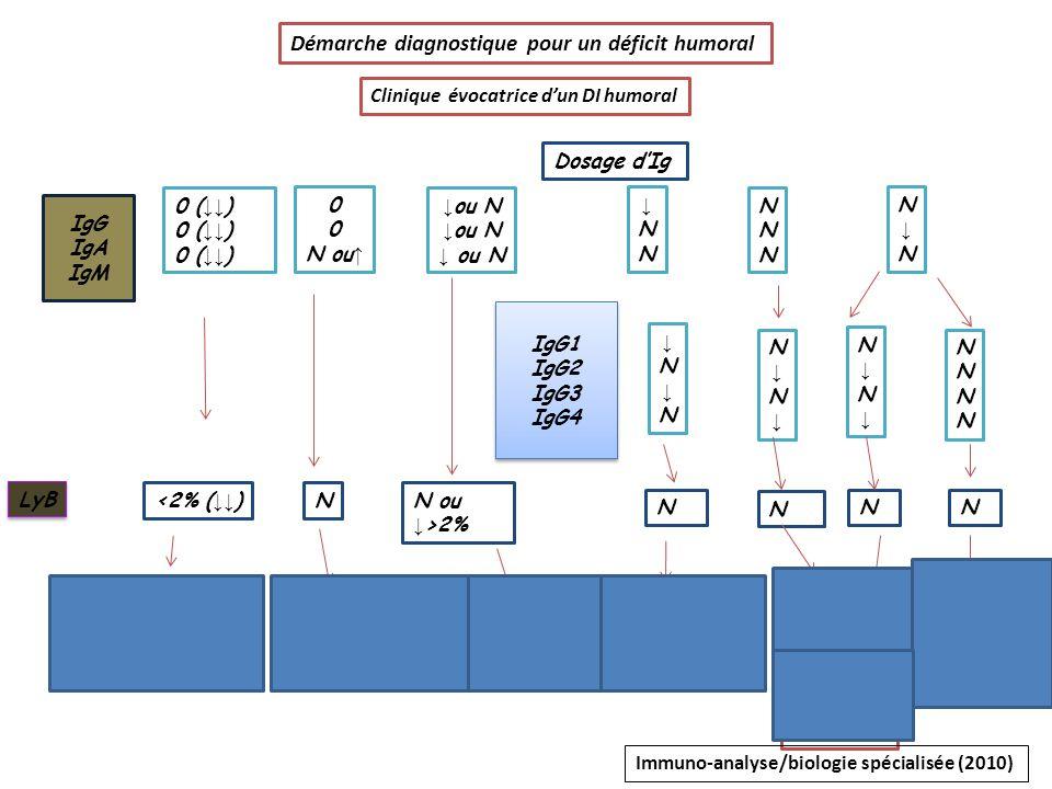 Démarche diagnostique pour un déficit humoral IgG IgA IgM 0 N ou LyB N ou N NNNNNN N N IgG1 IgG2 IgG3 IgG4 IgG1 IgG2 IgG3 IgG4 N N NN déficit IgG2/4 d