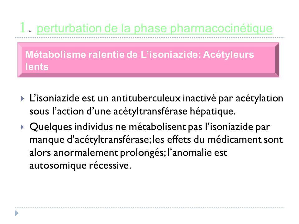 1. perturbation de la phase pharmacocinétique Métabolisme ralentie de Lisoniazide: Acétyleurs lents Lisoniazide est un antituberculeux inactivé par ac