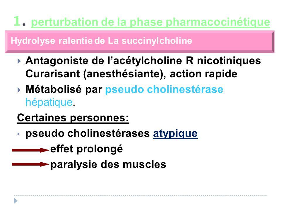 Antagoniste de lacétylcholine R nicotiniques Curarisant (anesthésiante), action rapide Métabolisé par pseudo cholinestérase hépatique.