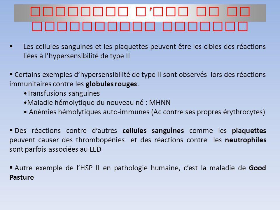 Les cellules sanguines et les plaquettes peuvent être les cibles des réactions liées à lhypersensibilité de type II Certains exemples dhypersensibilit