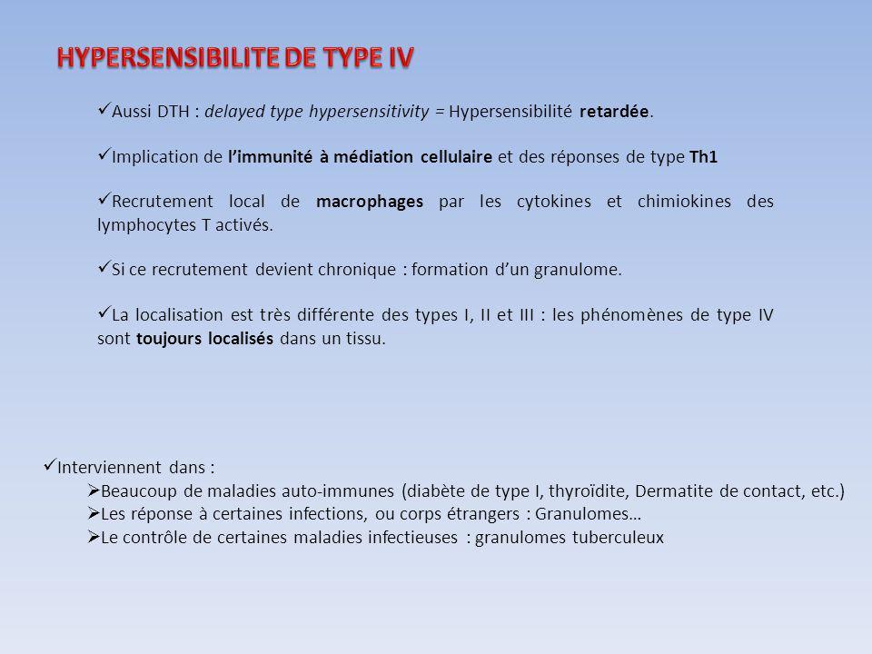 Aussi DTH : delayed type hypersensitivity = Hypersensibilité retardée. Implication de limmunité à médiation cellulaire et des réponses de type Th1 Rec