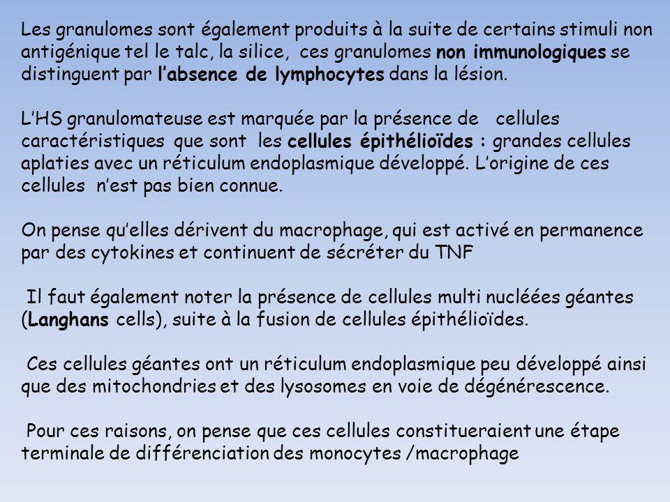 Les granulomes sont également produits à la suite de certains stimuli non antigénique tel le talc, la silice, ces granulomes non immunologiques se dis