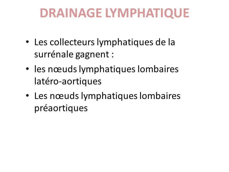Les collecteurs lymphatiques de la surrénale gagnent : les nœuds lymphatiques lombaires latéro-aortiques Les nœuds lymphatiques lombaires préaortiques