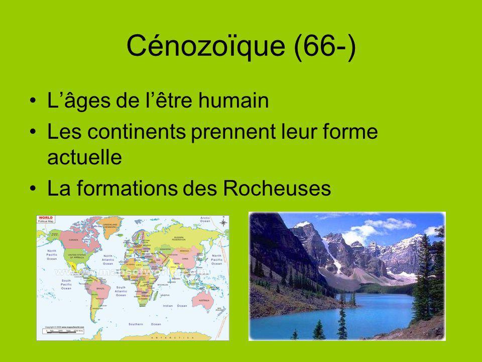 Cénozoïque (66-) Lâges de lêtre humain Les continents prennent leur forme actuelle La formations des Rocheuses