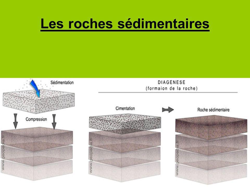Les roches sédimentaires