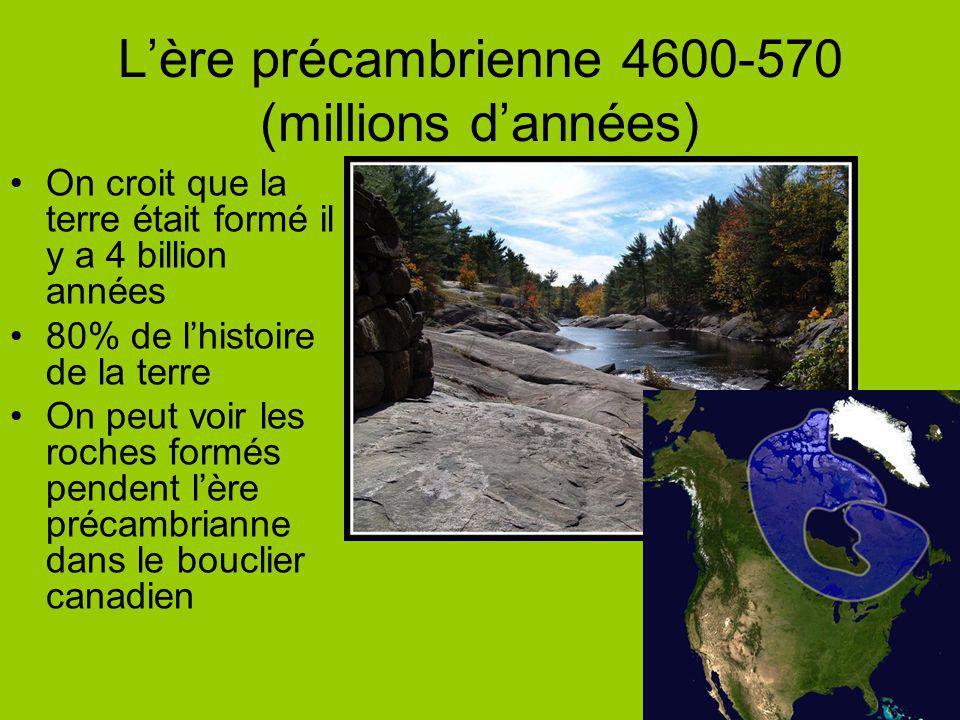 Lère précambrienne 4600-570 (millions dannées) On croit que la terre était formé il y a 4 billion années 80% de lhistoire de la terre On peut voir les