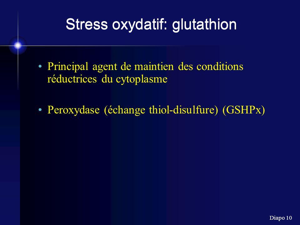 Diapo 10 Stress oxydatif: glutathion Principal agent de maintien des conditions réductrices du cytoplasme Peroxydase (échange thiol-disulfure) (GSHPx)