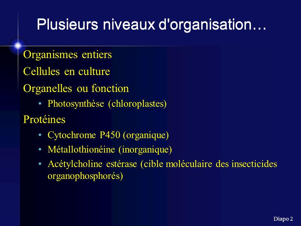 Diapo 2 Plusieurs niveaux d organisation… Organismes entiers Cellules en culture Organelles ou fonction Photosynthèse (chloroplastes) Protéines Cytochrome P450 (organique) Métallothionéine (inorganique) Acétylcholine estérase (cible moléculaire des insecticides organophosphorés)