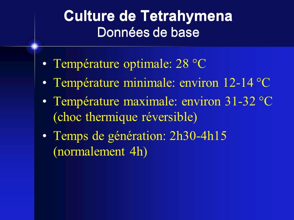 Culture de Tetrahymena Données de base Température optimale: 28 °C Température minimale: environ 12-14 °C Température maximale: environ 31-32 °C (choc thermique réversible) Temps de génération: 2h30-4h15 (normalement 4h)