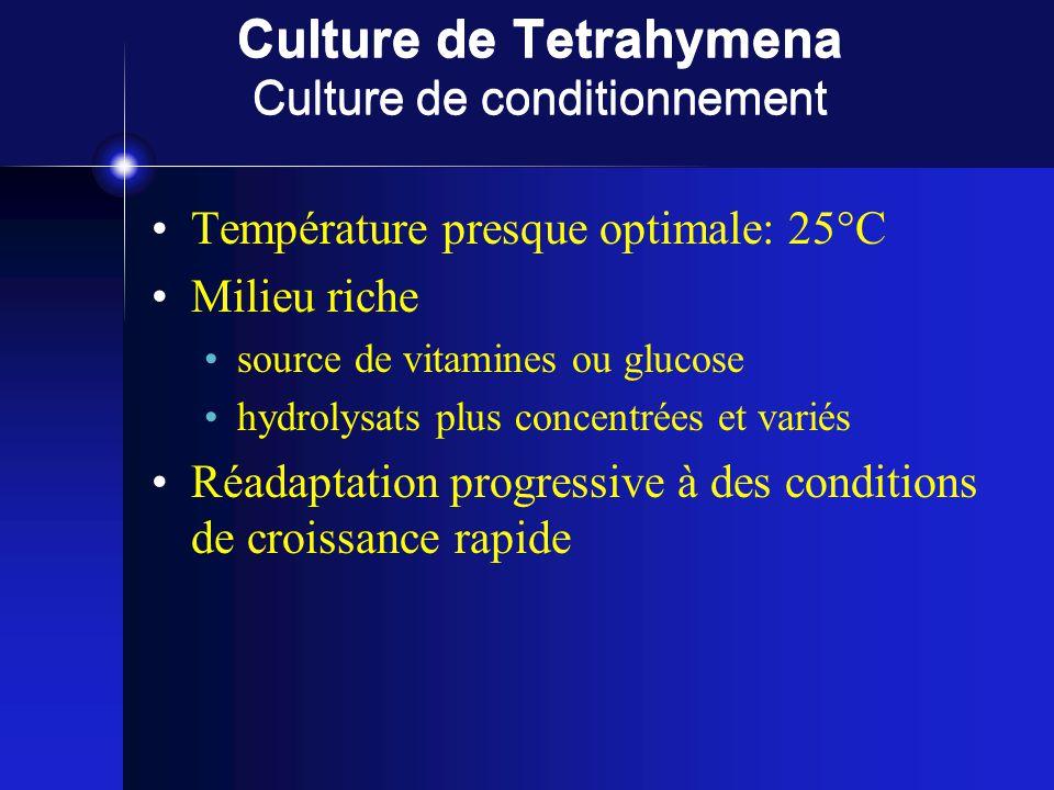 Culture de Tetrahymena Culture de conditionnement Température presque optimale: 25°C Milieu riche source de vitamines ou glucose hydrolysats plus concentrées et variés Réadaptation progressive à des conditions de croissance rapide