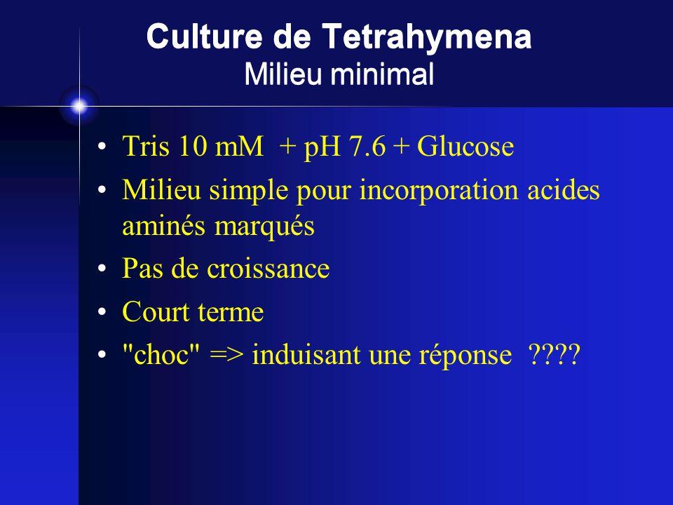 Culture de Tetrahymena Milieu minimal Tris 10 mM + pH 7.6 + Glucose Milieu simple pour incorporation acides aminés marqués Pas de croissance Court terme choc => induisant une réponse ????