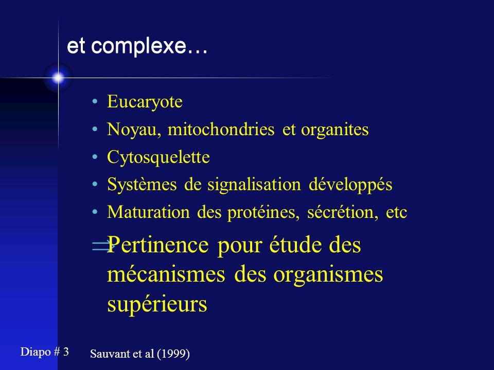 Diapo # 3 et complexe… Eucaryote Noyau, mitochondries et organites Cytosquelette Systèmes de signalisation développés Maturation des protéines, sécrét
