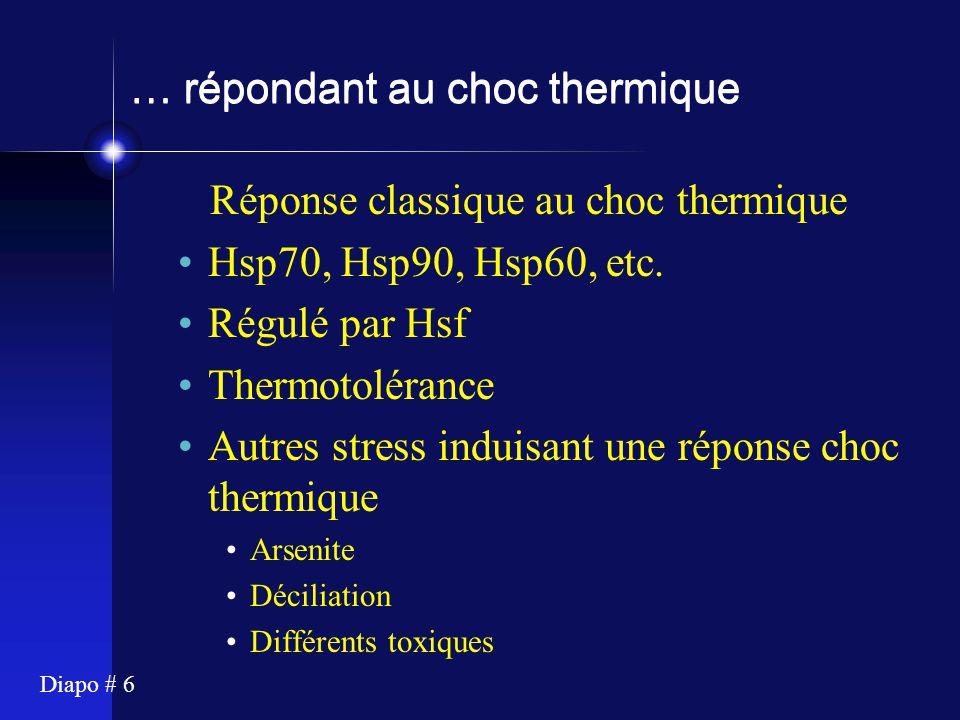 Diapo # 6 … répondant au choc thermique Réponse classique au choc thermique Hsp70, Hsp90, Hsp60, etc. Régulé par Hsf Thermotolérance Autres stress ind