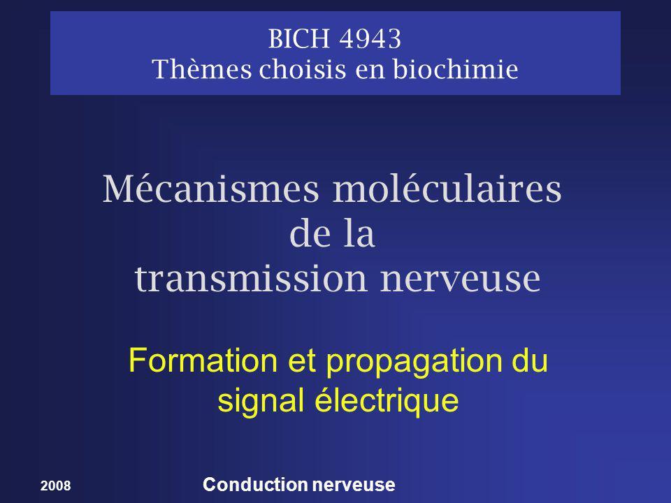 2008 Conduction nerveuse Tunnel à Na: Filtre de sélectivité Enlève les molécules deau associées sauf une pour obtenir un cation monohydraté détecte selon la taille des cations monovalents hydratés Tunnel (pore) = ~ 5 A°