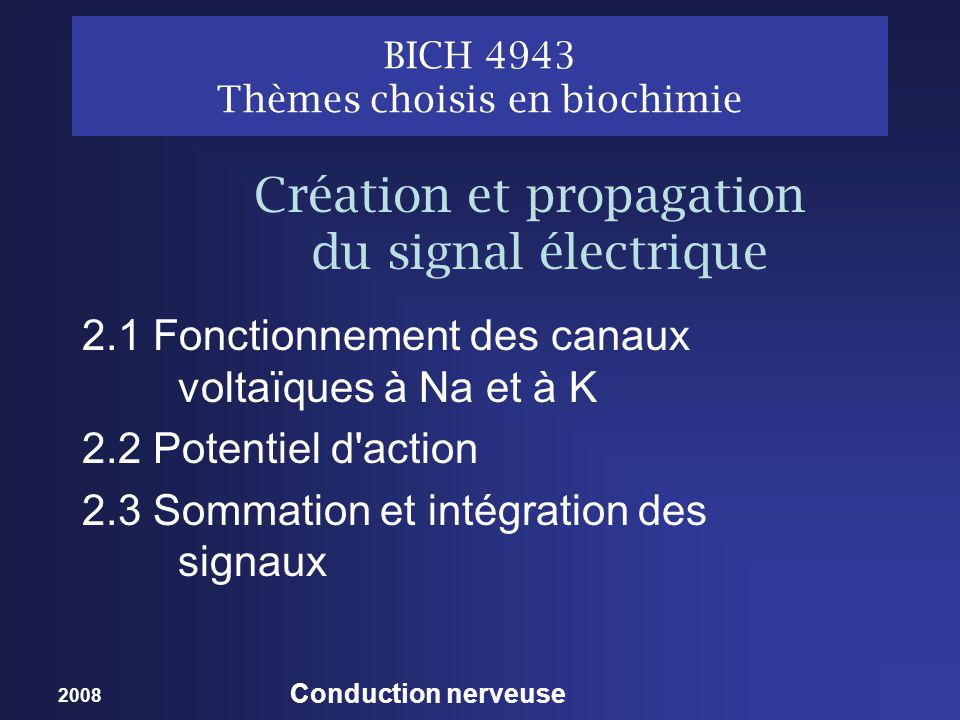 2008 Conduction nerveuse BICH 4943 Thèmes choisis en biochimie 2.1 Fonctionnement des canaux voltaïques à Na et à K 2.2 Potentiel d action 2.3 Sommation et intégration des signaux Création et propagation du signal électrique