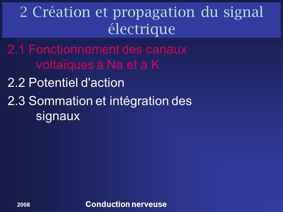 2008 Conduction nerveuse 2 Création et propagation du signal électrique 2.1 Fonctionnement des canaux voltaïques à Na et à K 2.2 Potentiel d action 2.3 Sommation et intégration des signaux