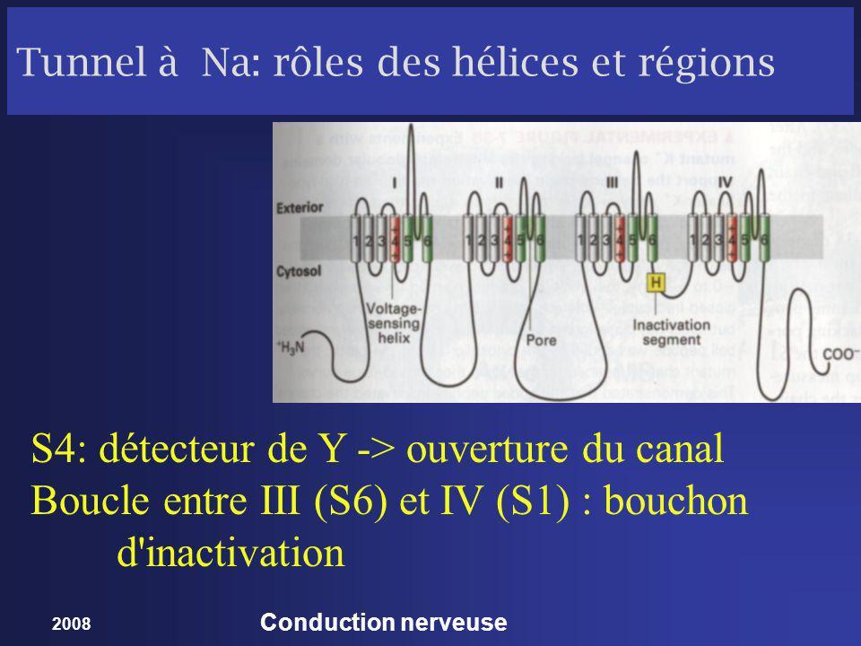 2008 Conduction nerveuse Canal à K : Structure 4 sous-unités semblables 6 hélices S4: détecteur de