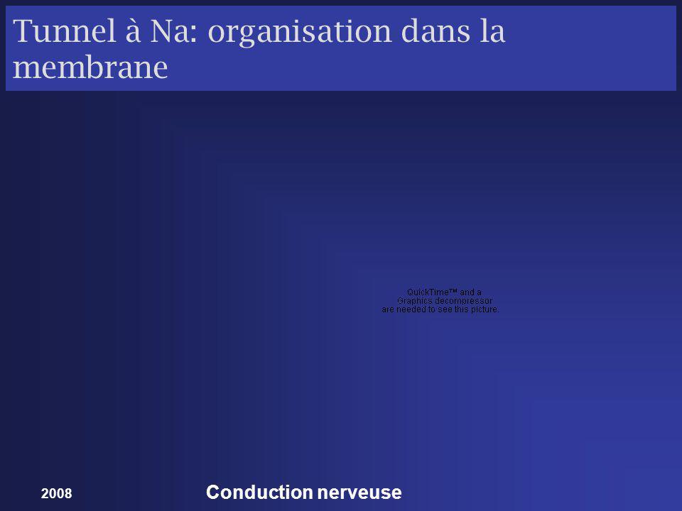 2008 Conduction nerveuse
