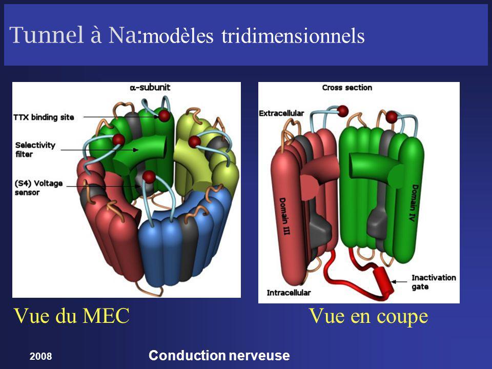 2008 Conduction nerveuse Tunnel à Na: modèles tridimensionnels Vue du MECVue en coupe