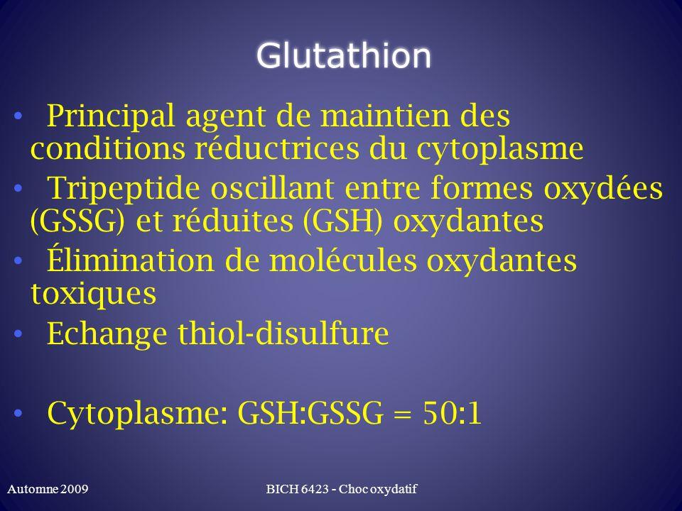 Glutathion Principal agent de maintien des conditions réductrices du cytoplasme Tripeptide oscillant entre formes oxydées (GSSG) et réduites (GSH) oxydantes Élimination de molécules oxydantes toxiques Echange thiol-disulfure Cytoplasme: GSH:GSSG = 50:1 Automne 2009BICH 6423 - Choc oxydatif