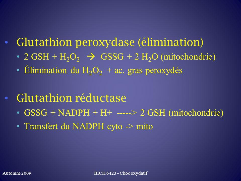 Glutathion peroxydase (élimination) 2 GSH + H 2 O 2 GSSG + 2 H 2 O (mitochondrie) Élimination du H 2 O 2 + ac.