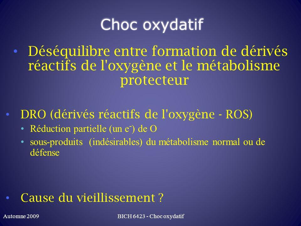 Stress oxydatif: sources des DRO Chaine respiratoire Principale source cellulaire Complexe IV qui réduit O 2 en H 2 O Cycle Q (quinone): Q + O 2 -> O 2 -> OH - Niveau basal de ROS durant fonctionnement normal Amplifié par blocage de la chaine respiratoire Anoxie ou hypoxie (peu/pas Poisons mitochondriaux Peroxysomes Radiations ionisantes Automne 2009BICH 6423 - Choc oxydatif