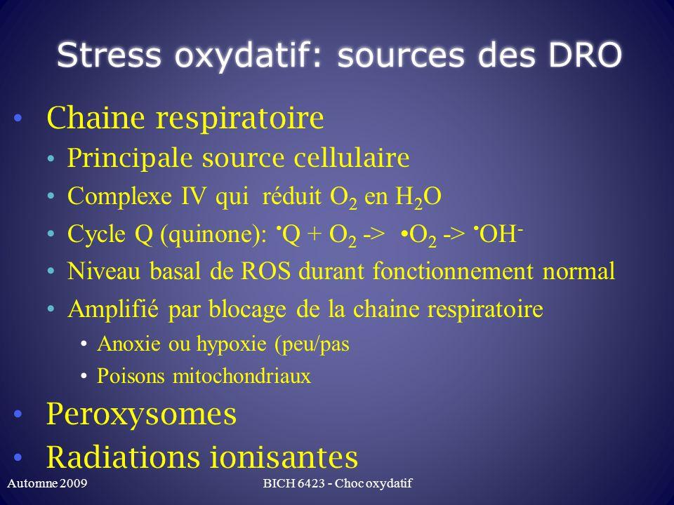Gluthation Echange thiol-disulfure GSH GSSG: élimination de molécules oxydantes toxiques GSSH GSH: regénération du GSH Avec NADPH + H + comme donneur délectrons NADPH: produit par voie des pentoses (cyto) Automne 2009BICH 6423 - Choc oxydatif
