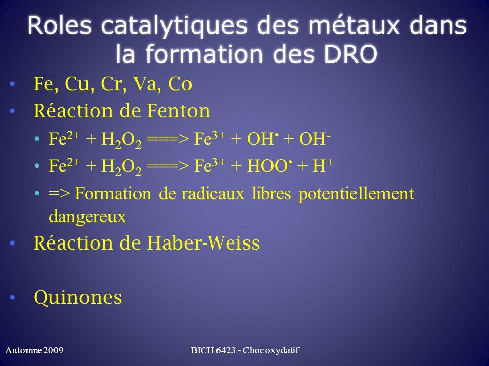 Roles catalytiques des métaux dans la formation des DRO Fe, Cu, Cr, Va, Co Réaction de Fenton Fe 2+ + H 2 O 2 ===> Fe 3+ + OH + OH - Fe 2+ + H 2 O 2 ===> Fe 3+ + HOO + H + => Formation de radicaux libres potentiellement dangereux Réaction de Haber-Weiss Quinones Automne 2009BICH 6423 - Choc oxydatif