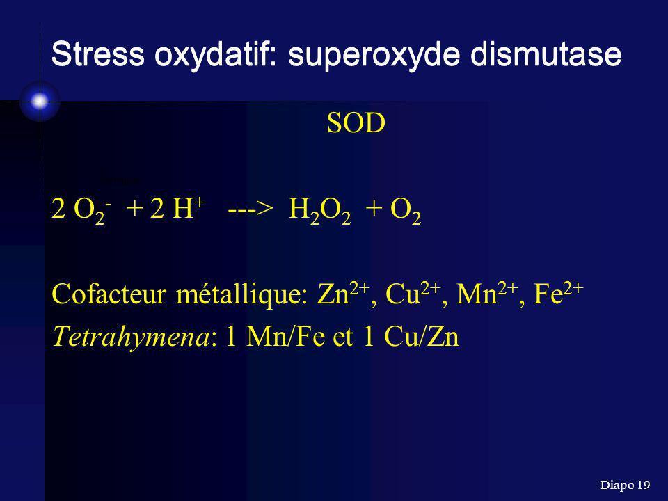 Diapo 19 formula Stress oxydatif: superoxyde dismutase SOD 2 O 2 - + 2 H + ---> H 2 O 2 + O 2 Cofacteur métallique: Zn 2+, Cu 2+, Mn 2+, Fe 2+ Tetrahy