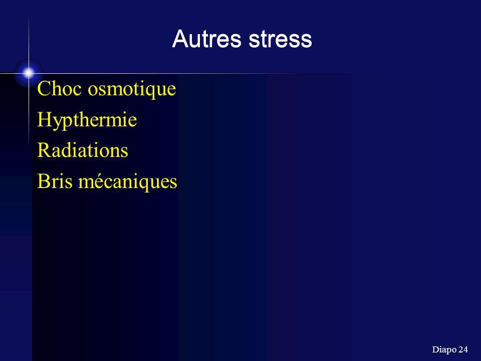 Diapo 24 Autres stress Choc osmotique Hypthermie Radiations Bris mécaniques