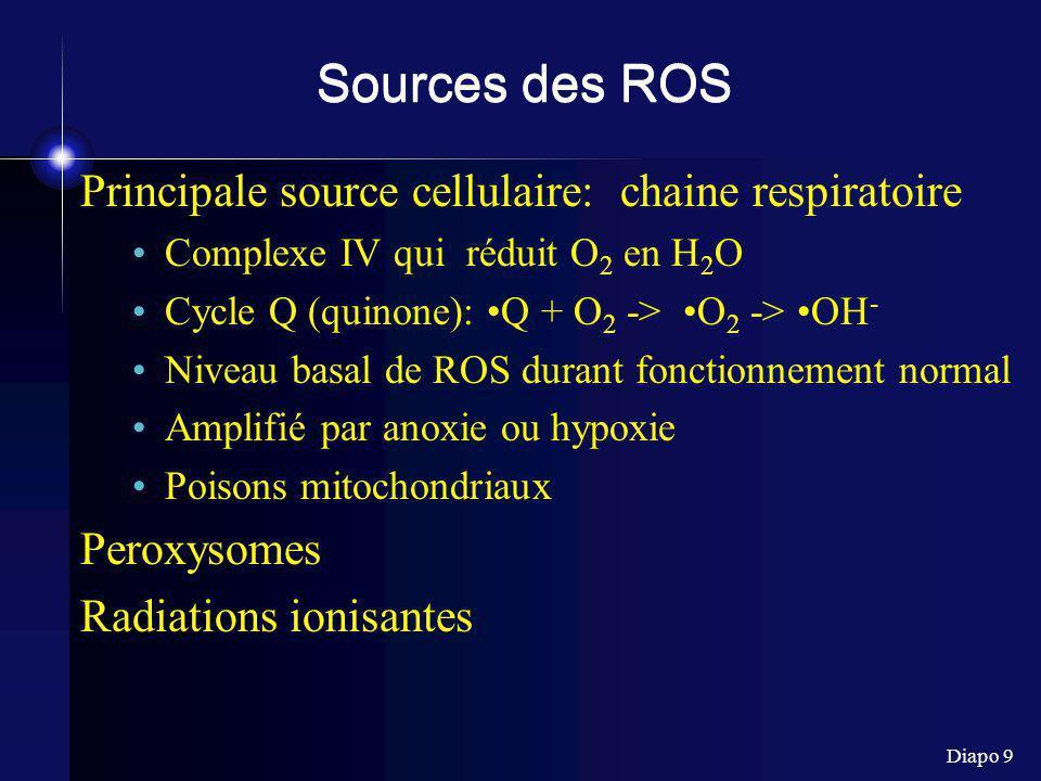 Diapo 9 Sources des ROS Principale source cellulaire: chaine respiratoire Complexe IV qui réduit O 2 en H 2 O Cycle Q (quinone): Q + O 2 -> O 2 -> OH - Niveau basal de ROS durant fonctionnement normal Amplifié par anoxie ou hypoxie Poisons mitochondriaux Peroxysomes Radiations ionisantes
