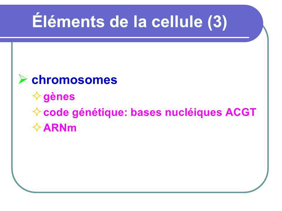 Éléments de la cellule (3) chromosomes gènes code génétique: bases nucléiques ACGT ARNm
