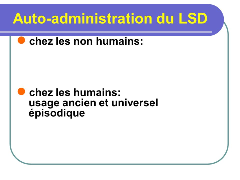 Auto-administration du LSD chez les non humains: chez les humains: usage ancien et universel épisodique