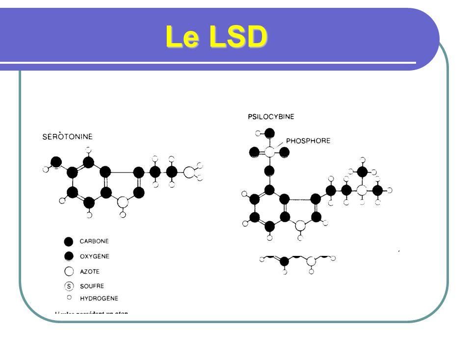 Historique du LSD ergot ergot -- -- hausse puis baisse de popularité hausse puis baisse de popularité pic fin 1960, début 1970 pic fin 1960, début 1970 effet de dose effet de dose forte: expérience mystique forte: expérience mystique faible: euphorie faible: euphorie