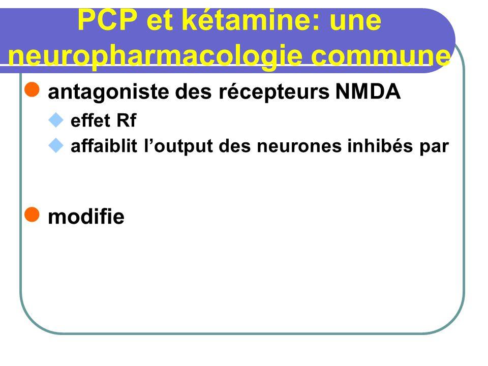 PCP et kétamine: une neuropharmacologie commune antagoniste des récepteurs NMDA effet Rf affaiblit loutput des neurones inhibés par modifie