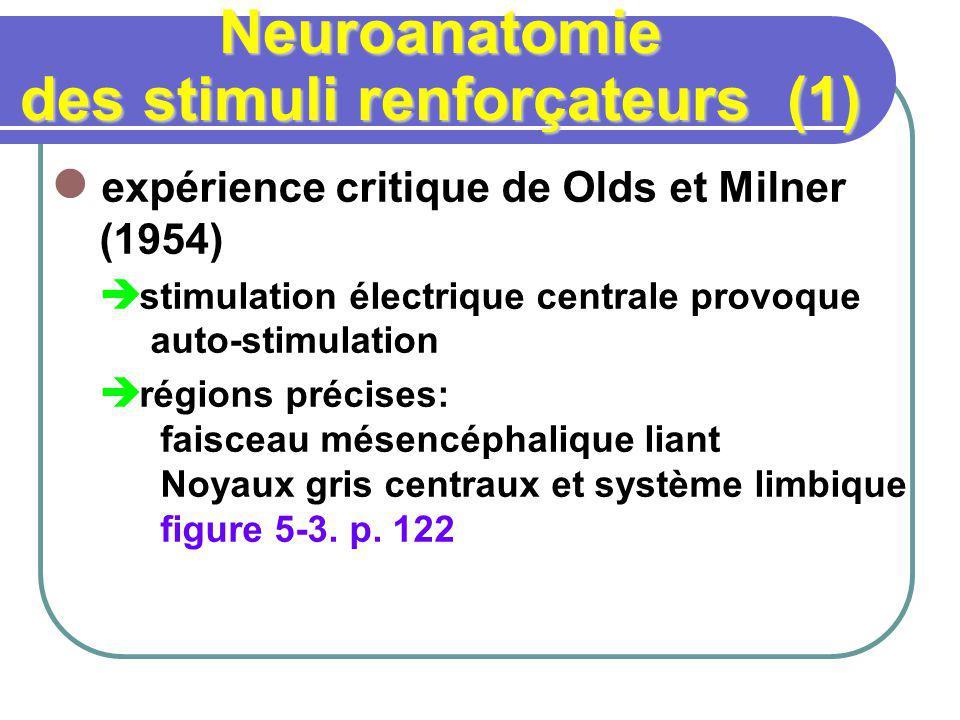 Neuroanatomie des stimuli renforçateurs (1) expérience critique de Olds et Milner (1954) stimulation électrique centrale provoque auto-stimulation régions précises: faisceau mésencéphalique liant Noyaux gris centraux et système limbique figure 5-3.