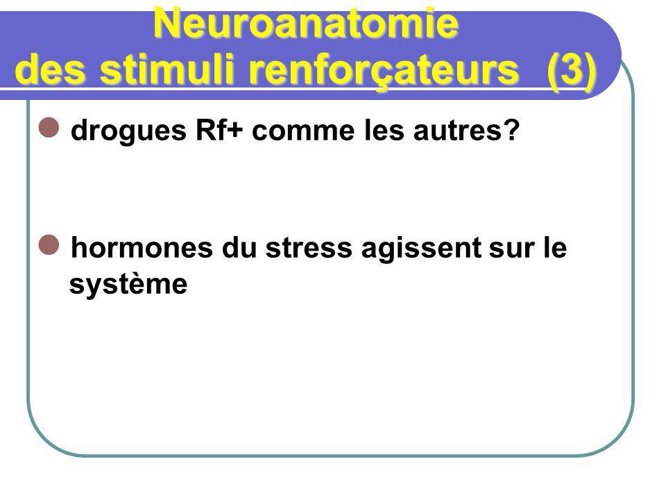 Neuroanatomie des stimuli renforçateurs (3) drogues Rf+ comme les autres? hormones du stress agissent sur le système