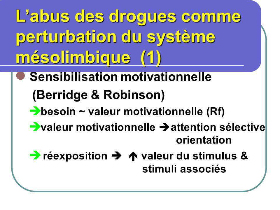 Sensibilisation motivationnelle (Berridge & Robinson) besoin ~ valeur motivationnelle (Rf) valeur motivationnelle attention sélective orientation réexposition valeur du stimulus & stimuli associés Labus des drogues comme perturbation du système mésolimbique (1) Labus des drogues comme perturbation du système mésolimbique (1)