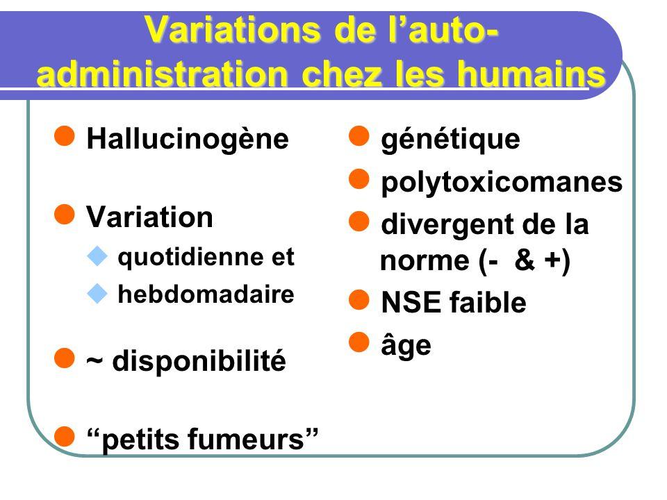 Variations de lauto- administration chez les humains Hallucinogène Variation quotidienne et hebdomadaire ~ disponibilité petits fumeurs génétique polytoxicomanes divergent de la norme (- & +) NSE faible âge