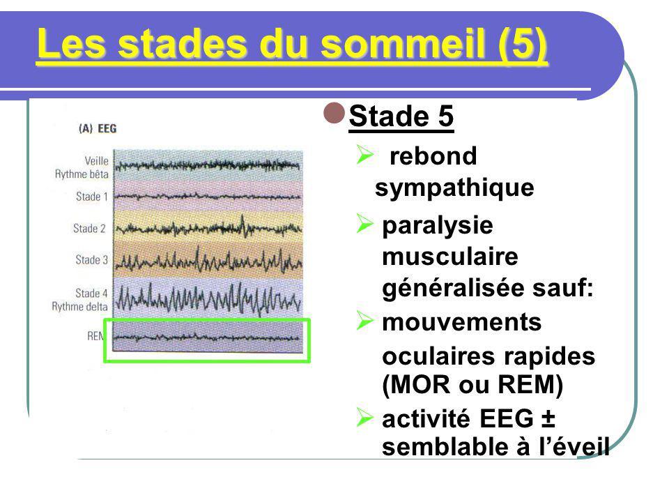 Les stades du sommeil (5) Stade 5 rebond sympathique paralysie musculaire généralisée sauf: mouvements oculaires rapides (MOR ou REM) activité EEG ± s
